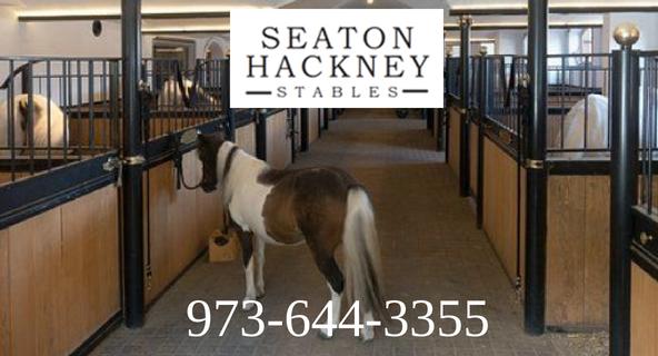 Seaton Hackney Stables