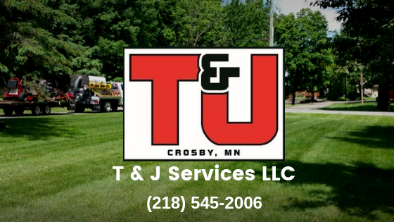 clean up,grass cutting,lawn services,yard work