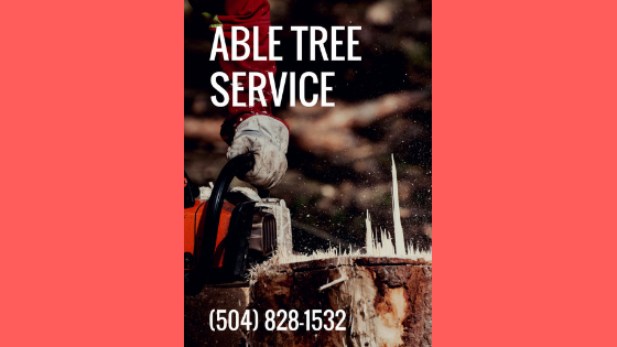 tree trimming, tree removal, stump grinding, tree services, stump removal