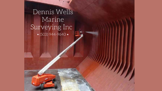 marine surveyor draft survery cargo hold cleanliness survey bunker survey cargo hold inspections P&I survey