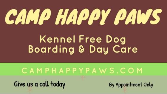 Dog Boarding, Kennel Free Dog Boarding, Dog Day Care, Free Range Dog Boarding, Overnight Boarding