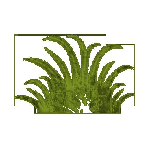 NativeGreen Pest Control & Fertilization - Pest Control - 623 NW