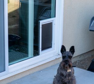 This @Petsafe is my favorite Doggie Pet Door to install into the Sliding Glass doors.